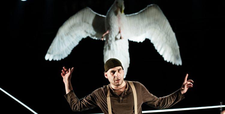 Fazakas Réka: Össz-színházi fesztivál
