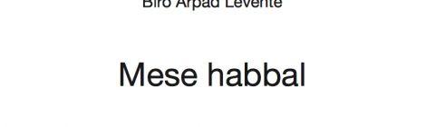 Biró Árpád Levente: Mese habbal